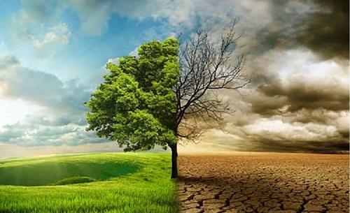 "Course Image <span lang=""en"" class=""multilang"">Adaptation and Mitigation to Climate Change</span>  <span lang=""es"" class=""multilang"">Adaptación y Mitigación al cambio climático</span>"
